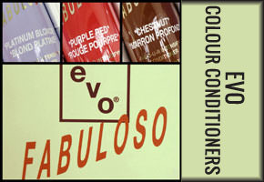 EVO colour conditioner