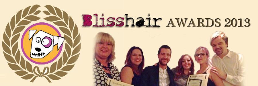 BLISS-AWARDS-2013-BANNER