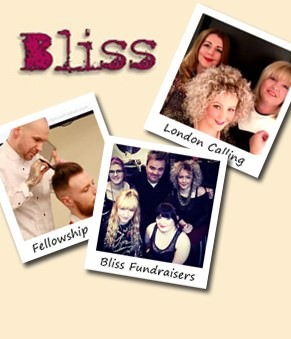 Bliss Snippets