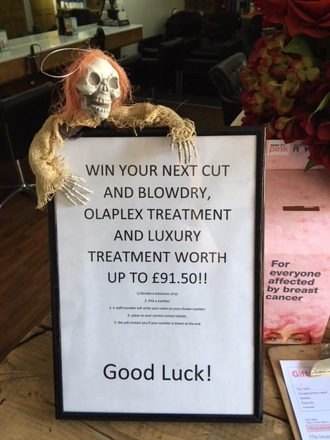 Halloween Comes To Bliss Hair