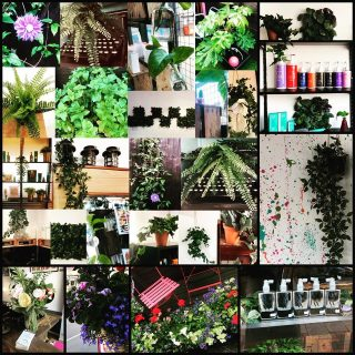 Bliss Hair Salons in Bloom!