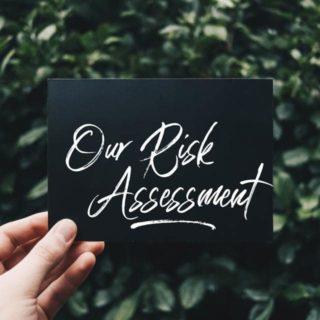 Bliss Hair Risk Assessment